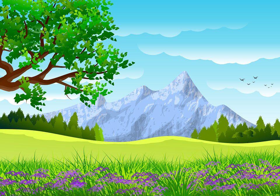 illustration-4922627_960_720.jpg